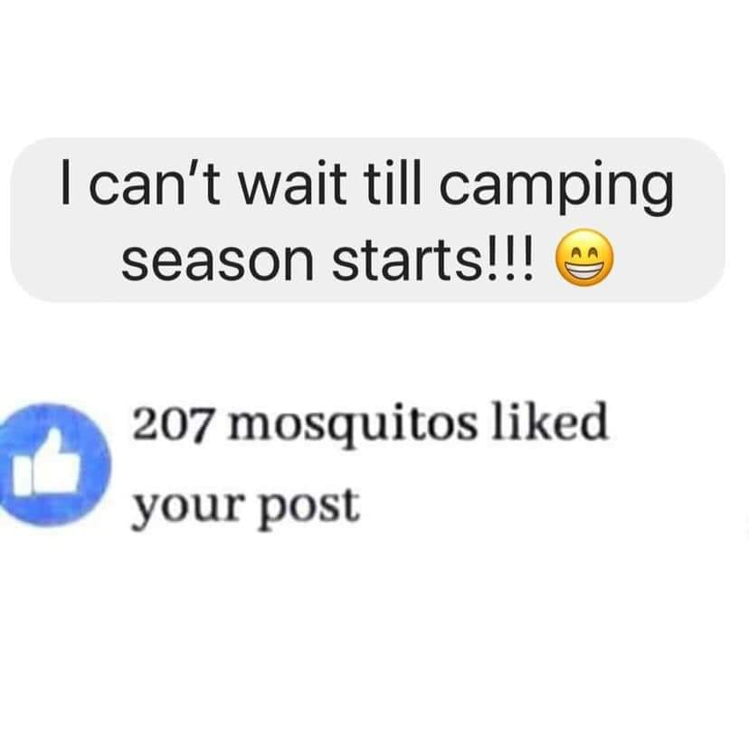 mosquitos like your post backpacking meme
